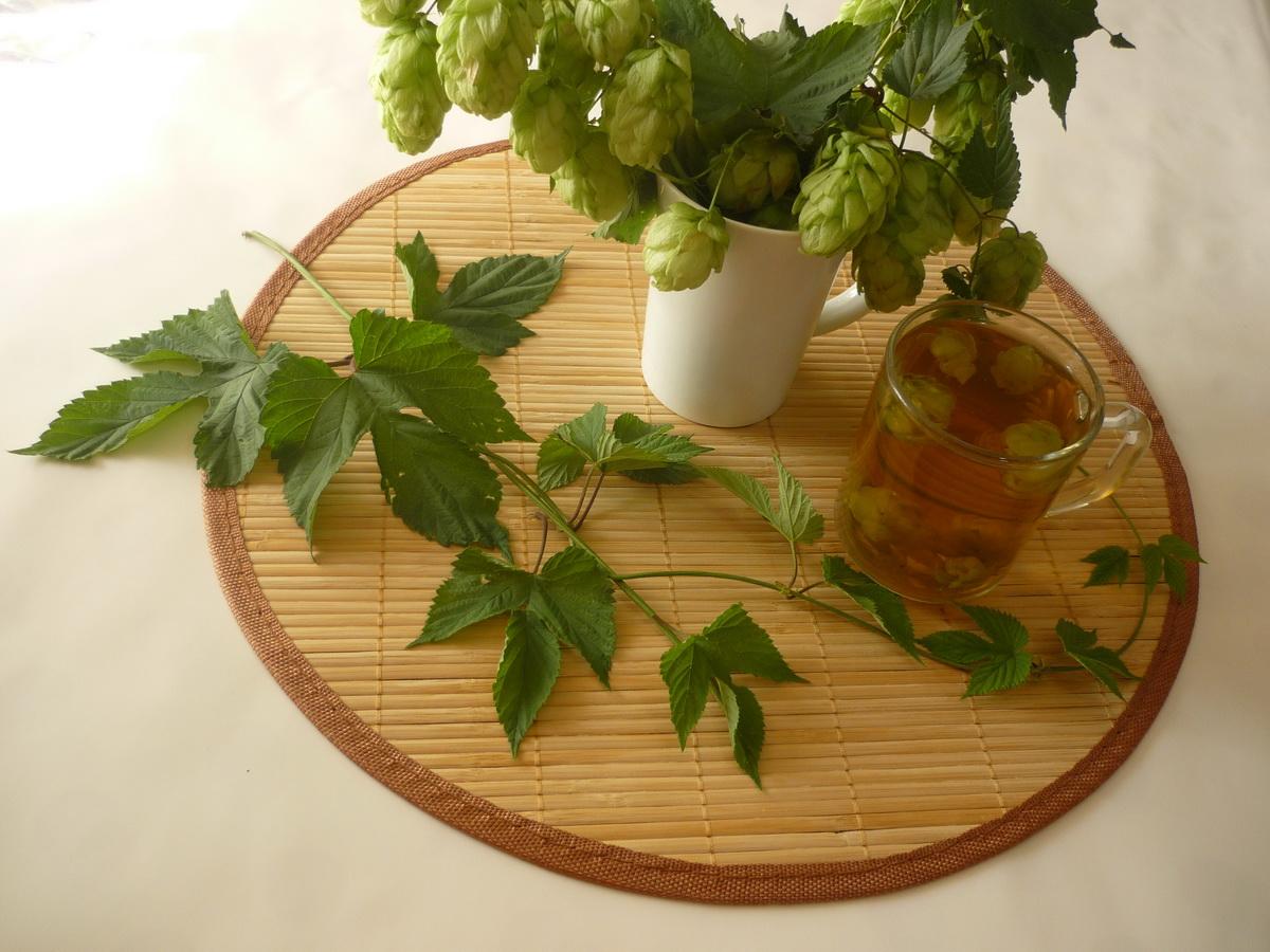 Чай с хмелем