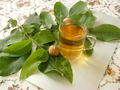 Чай и листья грецкого ореха