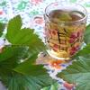 Чай из листьев чёрной смородины