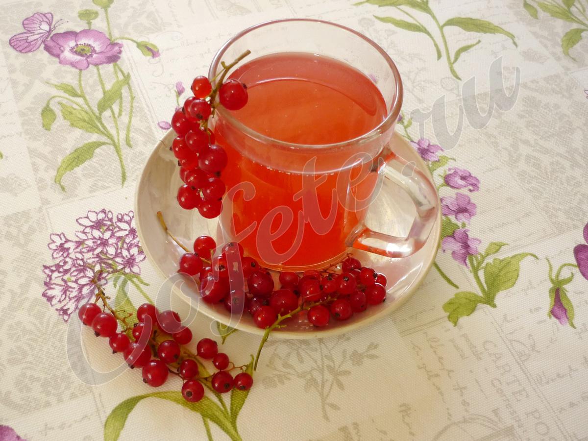 Чай из красной смородины
