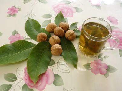 Грецкие орехи и листья