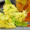 Чем полезен липовый чай? Как заваривать липовый чай?