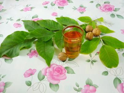 Листья грецкого ореха и чай