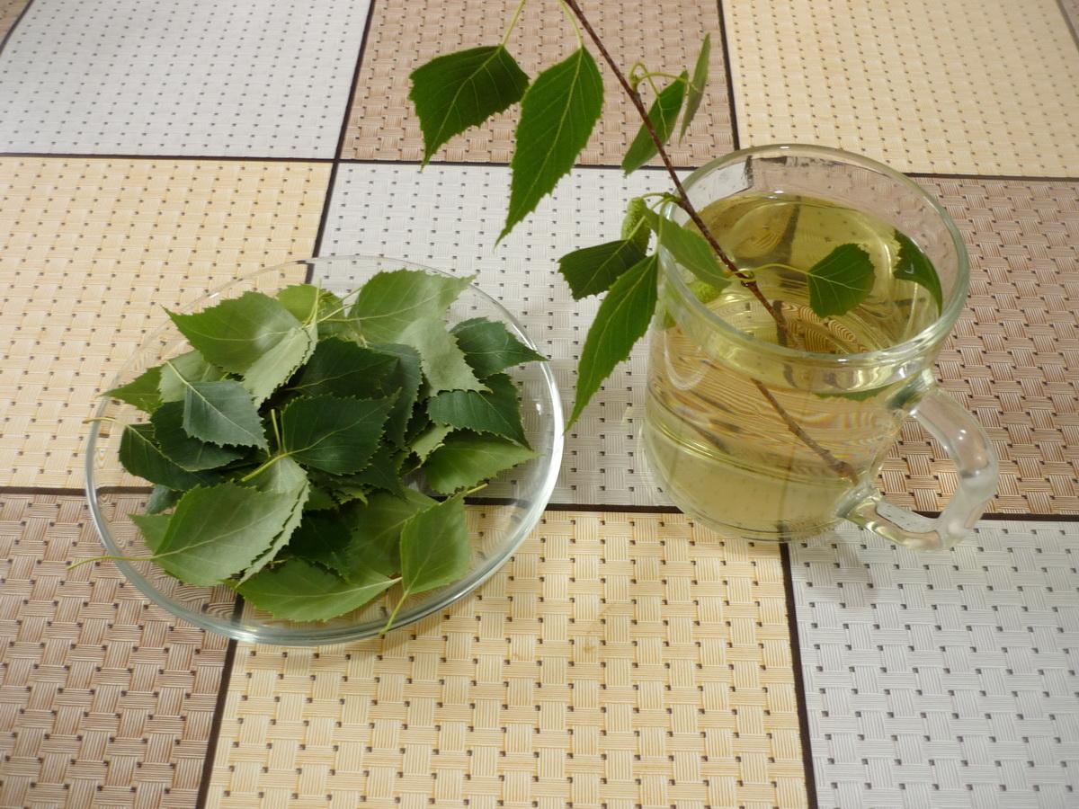 Настой березовых листьев