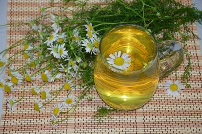 Завариваем чай из цветков Ромашки