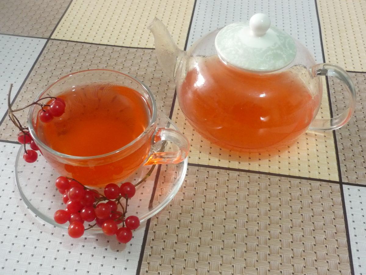 Завариваем калиновый чай