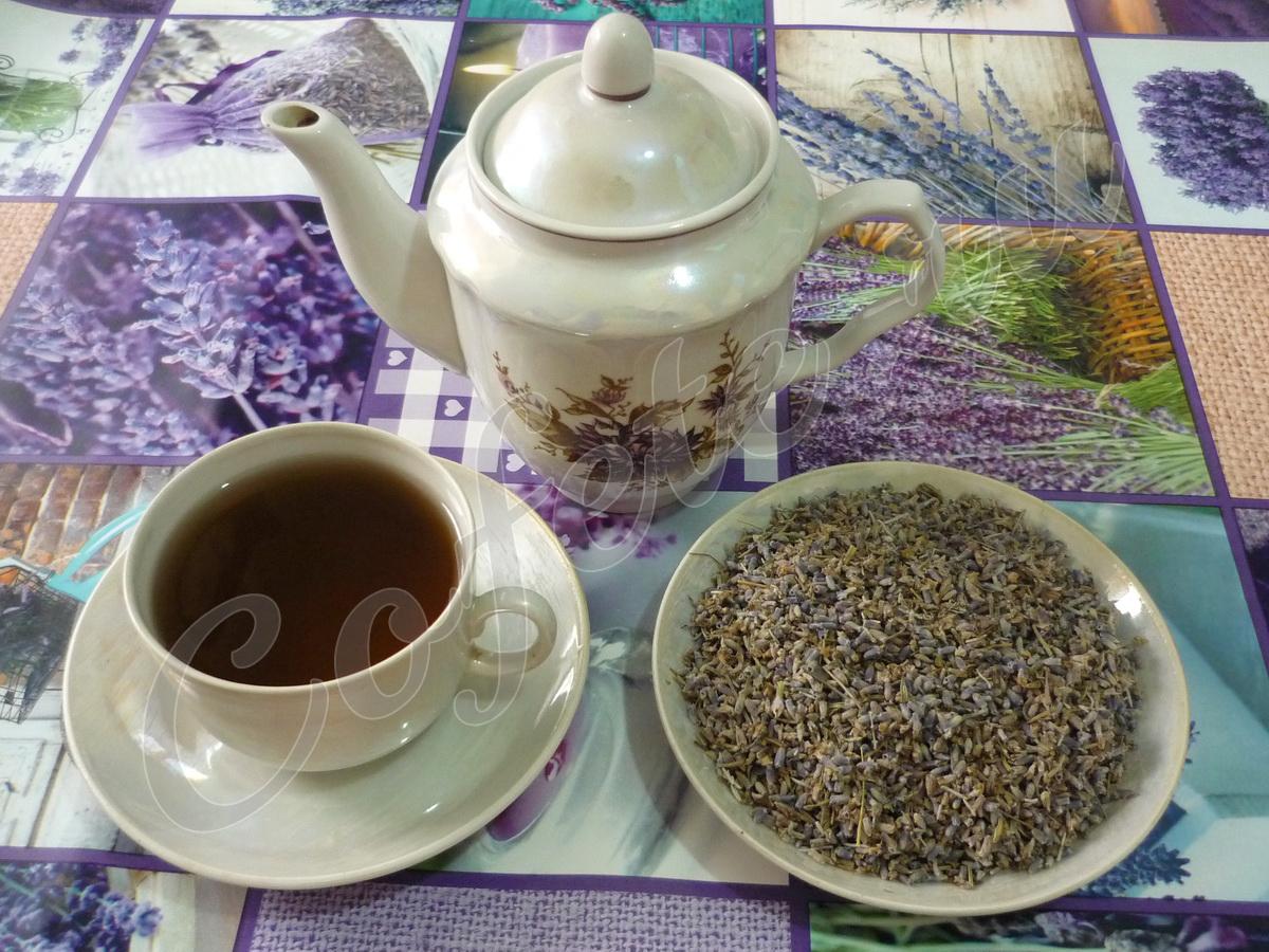 Завариваем лавандовый чай